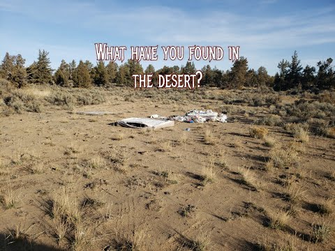 What have you found in the desert?