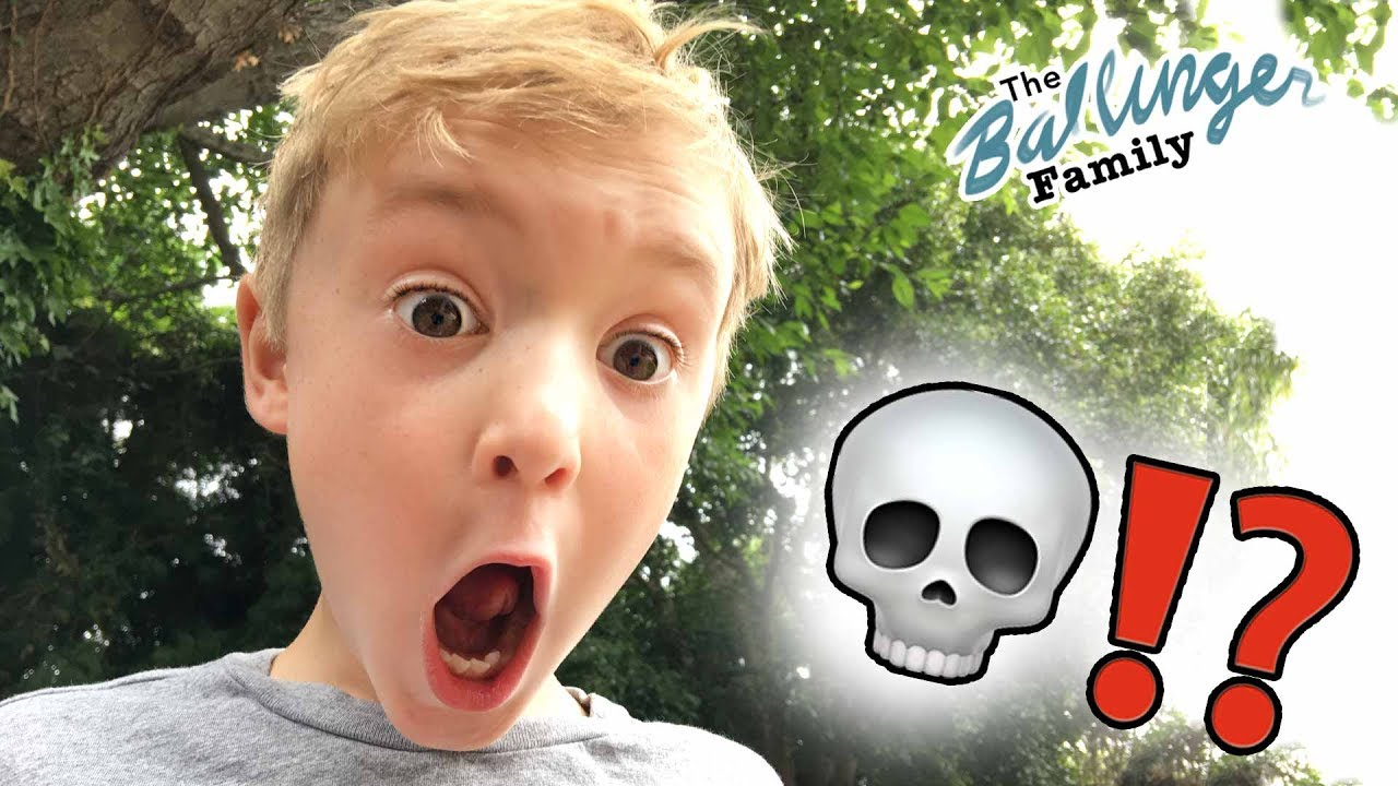 kids find skull in new backyard gross youtube