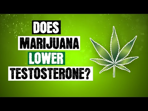does-marijuana-lower-testosterone?-(what-the-science-says)