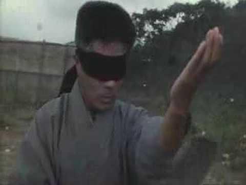 JET LI vs 6th dan Karate Master