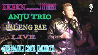 Download Mp3 Anju Trio Paleng Bae Cipt:cevin Syahailatua  Live Aek Nauli Cafe