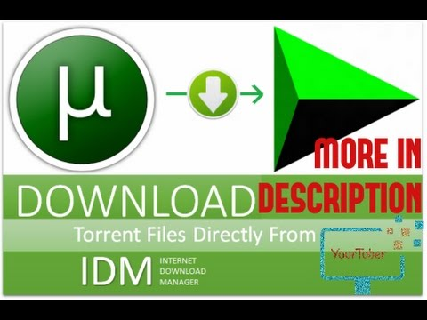 HOW TO DOWNLOAD TORRENTS DIRECTLY / via IDM - Seedr cc (upto 6gb) [More  sites in description]