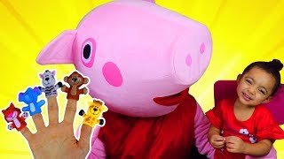 Finger Family | Learn Characters with Farm Animals Finger Family Nursery Rhymes Song with Leah