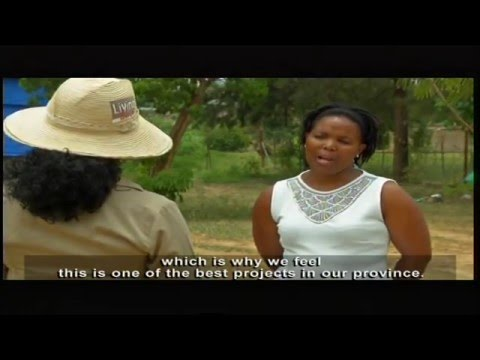 Living Land - Episode 17: Enterprising farmers in Limpopo