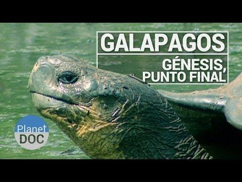 Galápagos. Génesis, Punto Final  Documental Completo  Planet Doc