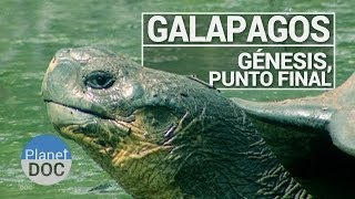 Galápagos. Génesis, Punto Final | Documental Completo - Planet Doc