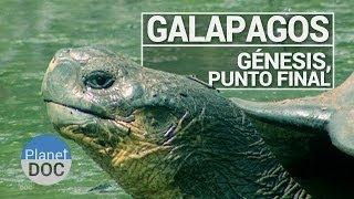 Galápagos. Génesis, Punto Final | Documental Completo - Planet Doc