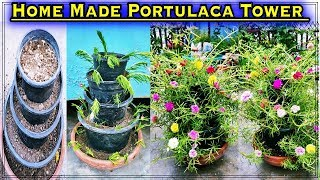 Easy & Free Home Made Portulaca Plant Tower with Multiple size of Pots ( Seven Colours Of Moss Rose)