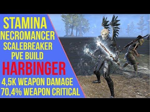 Stamina Necromancer PVE Build ESO - ArzyeLBuilds