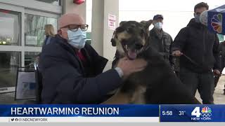 Dog Reunited With Owner After Saving His Life