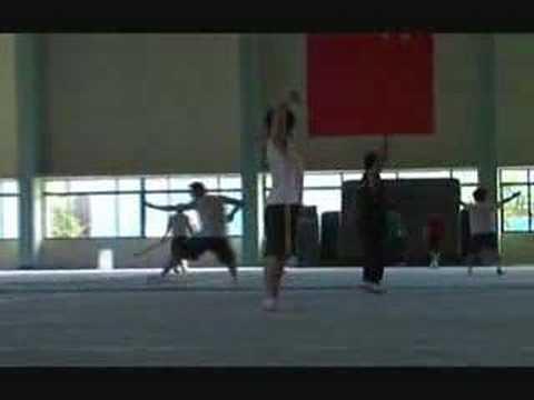 Shanghai wushu team training 2007