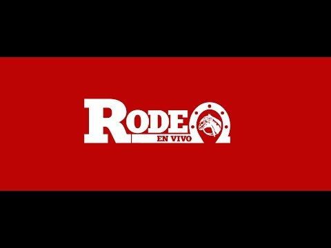 RODEO CLASIFICATORIO CENTRO SAN FERNANDO 2018, SERIE DE CAMPEONES