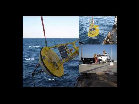 Ocean acidification time-series mooring at Grays Reef National Marine Sanctuary - Noakes, UGA