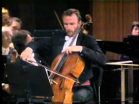 Beethoven Triple Concerto, 1st movement (Part 1 of 2) - Georg Pedersen