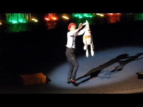 Клоун фокусник Цирк аквамарин
