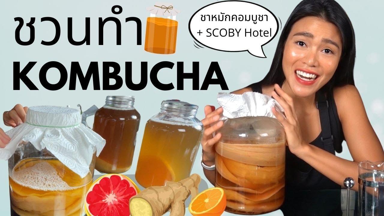 วิธีทำคอมบูชา How-To Make Kombucha (+ Scoby Hotel)  | Phaptawan