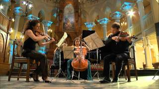 W.A. Mozart: Piano Quartet E flat major KV 493, 1st movement Allegro