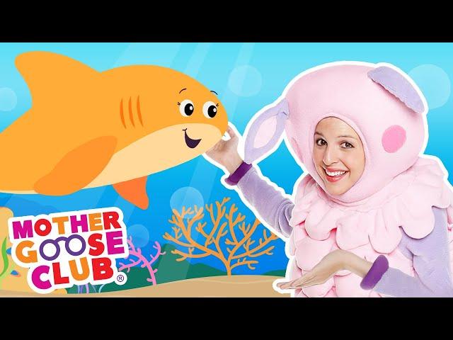 Baby Shark | Mother Goose Club Nursery Rhymes #NurseryRhymes