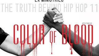 Now Available: The Truth Behind Hip Hop 11 - Color of Blood