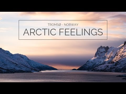 Tromsø - Arctic Feelings 4K (dog sledding, snowshoeing, northern lights, adventures, norway)