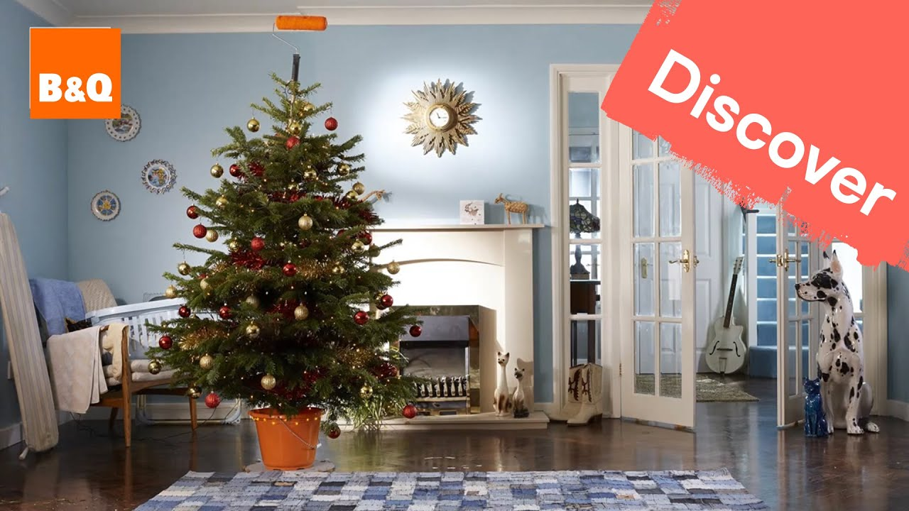 My journey as a B&Q Christmas tree: part 4 - YouTube