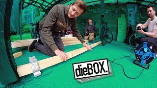 Wand bauen im BOX Hinterhof! 😲
