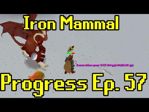 Oldschool Runescape - 2007 Iron Man Progress Ep. 57 | Iron Mammal