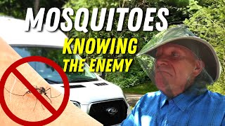 Know the Enemy! Mosquitoes, Ticks, & Wild Animal Safety | RV Podcast 356