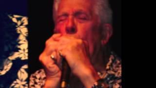 John Mayall - Big Town Playboy -  Concert in Milan 19/10/2015