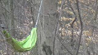 probably not the best idea or is it? i set hammock in hotzonein my yard 2018 interraction
