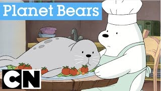 We Bare Bears Nature Show | Planet Bears