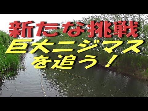 「道東十勝の釣り」 ★新たな挑戦★ スーパーレインボーを追い求める川