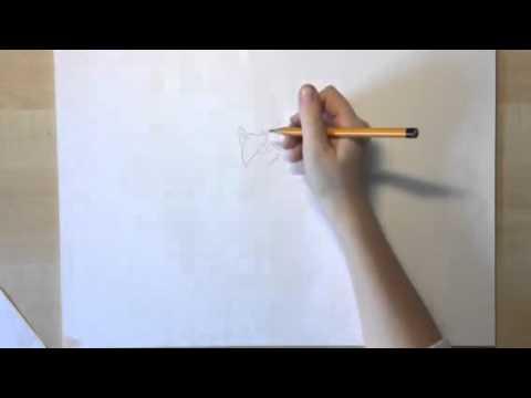 Warriorcats Zeichnen Ruspelz Youtube