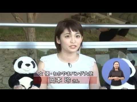 ゲスト:林 輝昭氏(株式会社アワーズ白浜事業所長)、岡本 玲氏(女優・わかやまパンダ大使)