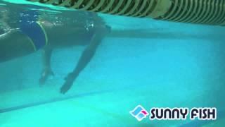 様々な動画・トレーニングメニューを公開中! 【SUNNY FISH STATION サ...