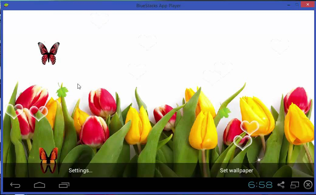 Tulip flower hd live wallpaper youtube tulip flower hd live wallpaper thecheapjerseys