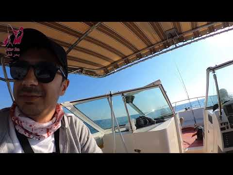 Qatar Jigging and Casting - Offshore Fishing