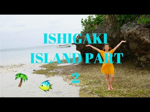 🌴 Tropical Island in Japan part 2