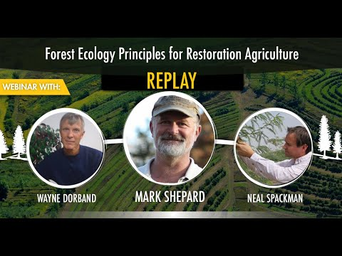 Mark Shepard: Using Forest Ecology Principals In Regenerative Agriculture