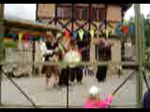 Vagando plays at lund's medieval festival