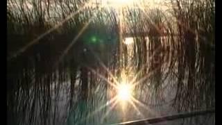 Рыбалка. На озере... - Александр Левшин.
