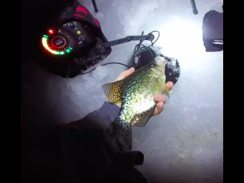 Night time crappie bite pressured lake youtube for Crappie fishing at night