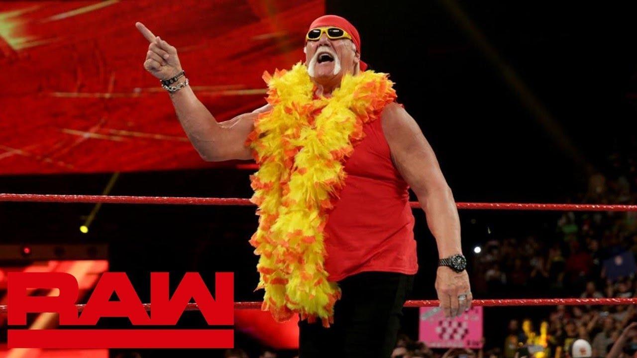 WWE Hulk Hogan Figure Elite 34 WRESTLING WWF Hulkamania Hulk règles