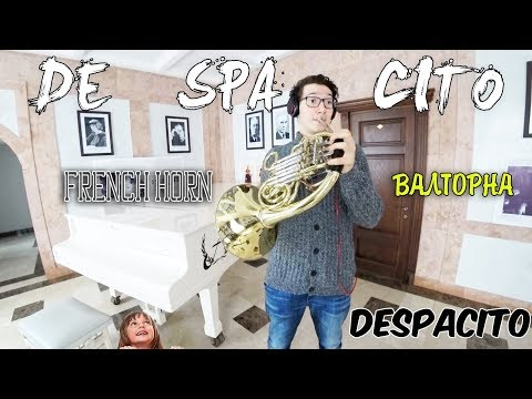 DESPACITO FRENCH HORN | ВАЛТОРНА