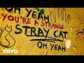 Stray Cat Blues (Lyric Video)