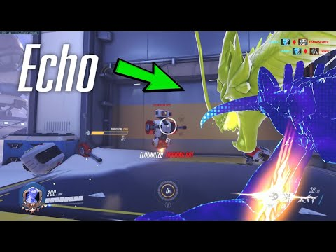 Download Overwatch - Echo using ALL Heroes' Ultimates! Amazing Duplicate Ability