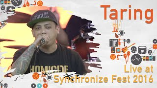 Gambar cover Taring live at Synchronize Fest - 29 Oktober 2016