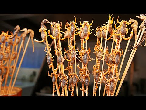 Chinese Street Food -  Live Scorpions, Insects, Tiger Claws China