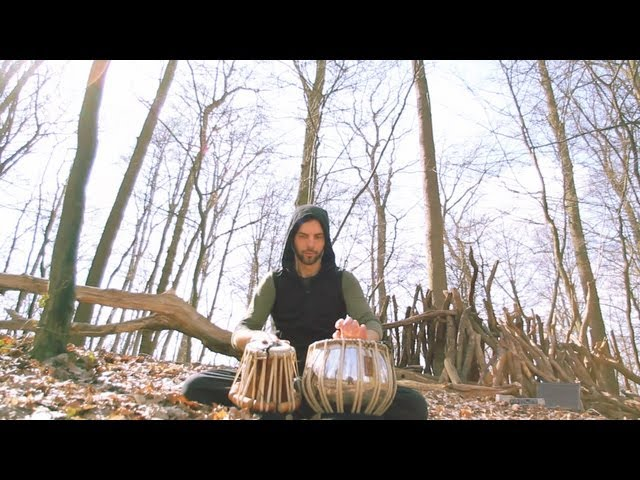 Armin Metz plays exotic sounds on tabla ° forest Sympla hang out (real-time trigger skills #2)