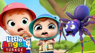 Can Bebek Ufak Canlıları Tanıyalım, Küçük Böcek  Kesintisiz Bebek ve Çocuk Şarkıları  Little Angel